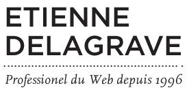 Etienne Delagrave, Professionel du Web depuis 1996